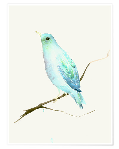 Póster Turquoise Blue Bird
