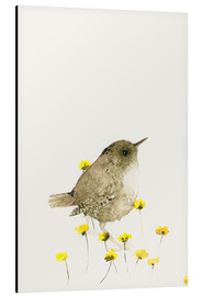 Aluminio-Dibond  Wren and yellow flowers - Dearpumpernickel