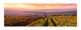 Póster Panoramic of autumn vineyards near Ville Dommange in Champagne, France