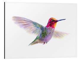 Aluminio-Dibond  Hummingbird - Verbrugge Watercolor