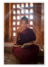 Póster  Young Burmese monk in meditation at the monastery - Jan Christopher Becke