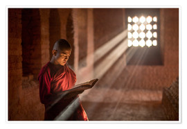 Póster  Buddhist monk in a monastery in Burma - Jan Christopher Becke