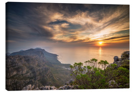 Lienzo  Table Mountain - Salvadori Chiara