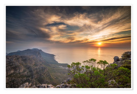 Póster  Table Mountain - Salvadori Chiara