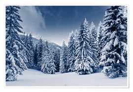 Póster winter landscape with snow covered trees