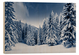Madera  winter landscape with snow covered trees