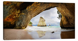 Lienzo  Cathedral Cove - New Zealand - Michael Rucker