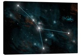 Lienzo  An artist's depiction of the constellation Cancer. - Marc Ward