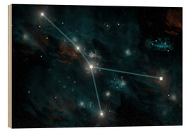 Cuadro de madera  An artist's depiction of the constellation Cancer. - Marc Ward