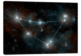 Lienzo  Artist's depiction of the constellation Capricorn the Sea Goat. - Marc Ward