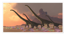 Póster  A family of Mamenchisaurus dinosaurs. - Corey Ford