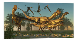 Cuadro de PVC  A pack of Dilophosaurus dinosaurs hunting for prey. - Corey Ford