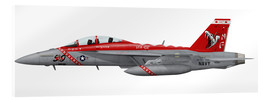 Cuadro de metacrilato  Illustration of an F/A-18F Super Hornet assigned to VFA-102.