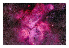 Póster  The Carina Nebula in the southern sky - Alan Dyer