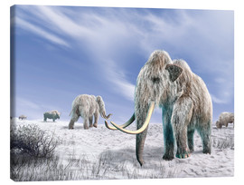 Lienzo  Two Woolly Mammoths in a snow covered field with a few bison. - Leonello Calvetti