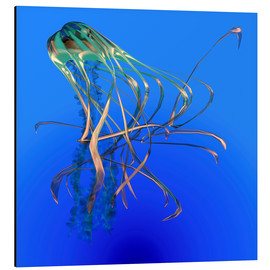 Cuadro de aluminio  Teal jellyfish illustration. - Corey Ford
