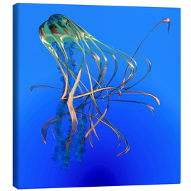 Lienzo  Teal jellyfish illustration. - Corey Ford