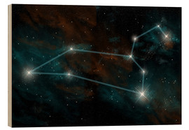 Cuadro de madera  Artist's depiction of the constellation Leo the Lion. - Marc Ward