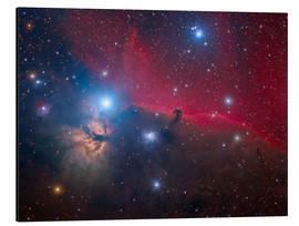 Cuadro de aluminio  The Horsehead Nebula and Flame Nebula - Roberto Colombari