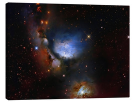 Lienzo  Messier 78, a reflection nebula in the constellation Orion. - Roberto Colombari