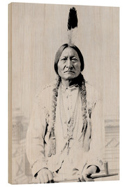 Madera  Chief Sitting Bull