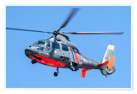 Póster  French Navy AS365 Dauphin helicopter in flight over France. - Timm Ziegenthaler