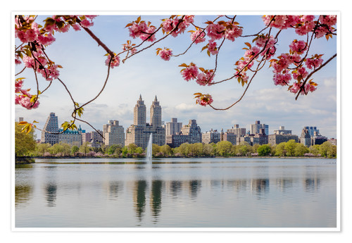 Póster Buildings reflected in lake with cherry flowers in spring, Central Park, New York, USA