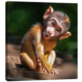 Lienzo  Baby Monkey - Photoplace Creative