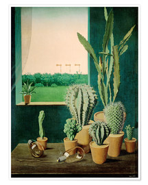 Póster  Cacti and semaphores - Georg Scholz