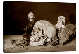 Lienzo  Still Life - skull, ancient book, dry rose and candle