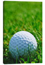Lienzo  Golf ball in the grass