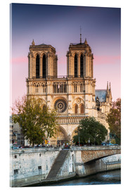 Cuadro de metacrilato  Notre Dame cathedral at sunset, Paris, France - Matteo Colombo