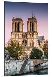 Cuadro de aluminio  Notre Dame cathedral at sunset, Paris, France - Matteo Colombo