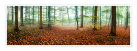 Póster Autumn forest panorama with red autumn leaves