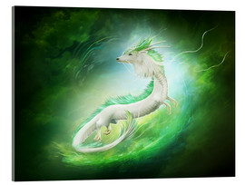 Metacrilato  White dragon - Elena Dudina