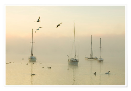 Póster A misty morning over Lake Windermere Lake District