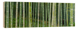 Cuadro de madera  Green bamboo forest in Kyoto, Japan - Jan Christopher Becke