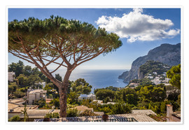 Póster Dream island of Capri in the Gulf of Naples (Italy)