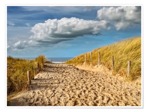 Póster Through the dunes to the beach