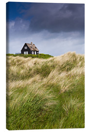 Lienzo  Cottage in the dunes during storm