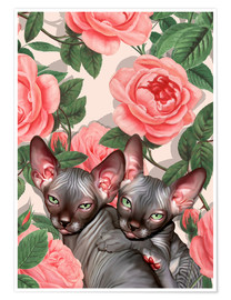 Póster Kitten and roses