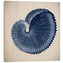 Madera  Seashell - Mandy Reinmuth