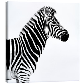 Lienzo  Safari Profile Collection - Zebra White Edition II - Philippe HUGONNARD