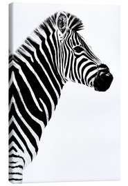 Lienzo  Safari Profile Collection - Zebra White Edition III - Philippe HUGONNARD