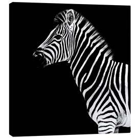 Lienzo  Safari Profile Collection - Zebra Black Edition II - Philippe HUGONNARD