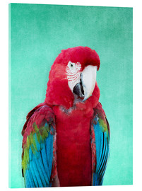 Cuadro de metacrilato  Tropical Macaw bird art poster - Alex Saberi