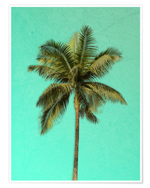 Póster Palm tree