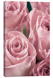 Lienzo  Bunch of roses in pale pink