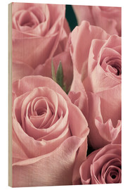 Madera  Bunch of roses in pale pink