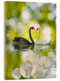 Cuadro de madera  Two swans in love